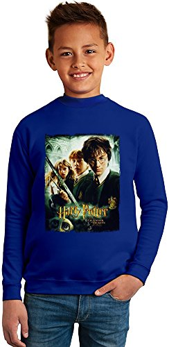 Harry potter and the chamber of secrets Superb Quality Boys Sweater by TRUE FANS APPAREL - 50% Cotton & 50% Polyester- Set-In Sleeves- Open End Yarn- Unisex for Boys and Girls 4-5 years