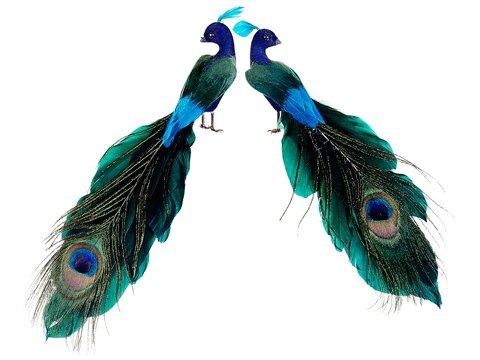Set of 2 Regal Peacock Colorful Closed-Tail Bird Christmas Ornaments