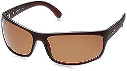Police Polarized Sport Men's Sunglasses (S1863M71Z55PSG 71 Brown lens)