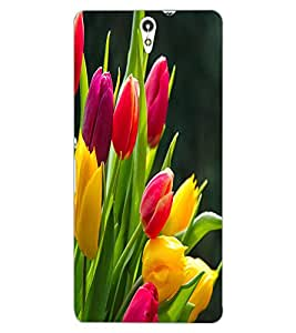 ColourCraft Beautiful Flowers Design Back Case Cover for SONY XPERIA C5 ULTRA DUAL