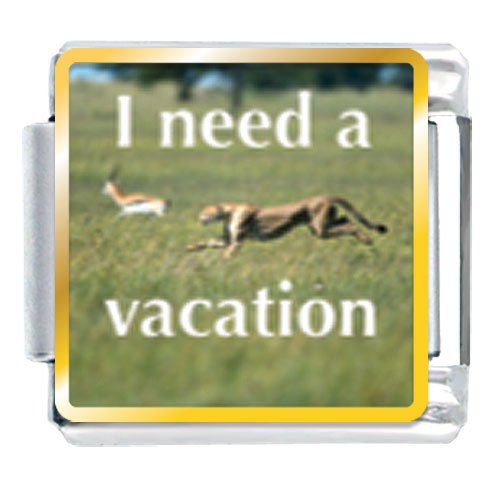 I Need A Vacation Animal Photo Italian Charms Bracelet Link