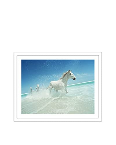 Getty Images South Africa, Cape Town, Noordhoek, Horses Galloping Through Surf