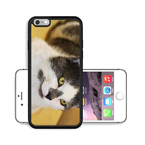 luxlady-premium-apple-iphone-6-plus-iphone-6s-plus-aluminum-backplate-bumper-snap-case-kamil-scat-pe
