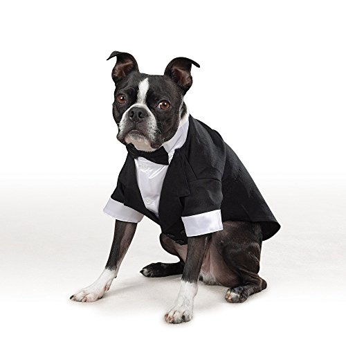 east-side-collection-yappily-ever-after-groom-tux-small