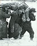 img - for Battle of the Bulge (World War II) book / textbook / text book