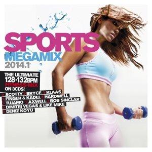 VA - SPORTS MEGAMIX 2014.1-3CD-2014-MOD Download