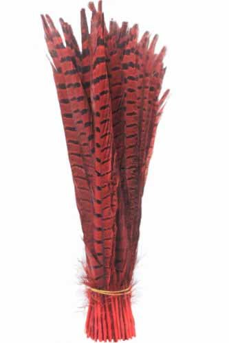 Pheas (Yellow Feather Wings Costume)