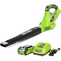 GreenWorks 24252 40V Li-Ion Cordless Sweeper