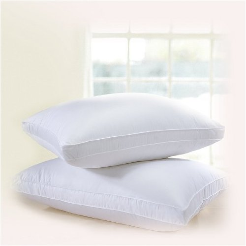 Downright Eclipse Gusseted 700+ Polish Goose Down Pillow - Standard