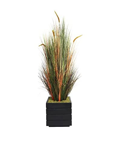 Laura Ashley 66 Onion Grass With Cattails in a 14 Planter