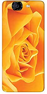 Timpax protective Armor Hard Bumper Back Case Cover. Multicolor printed on 3 Dimensional case with latest & finest graphic design art. Compatible with only Micromax A350 Canvas Knight. Design No :TDZ-21257