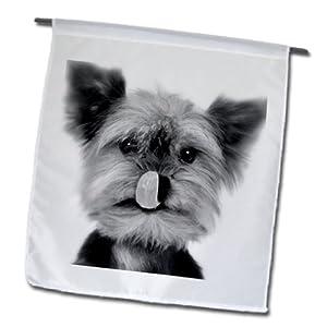 3dRose fl_11329_1 Yorkshire Terrier Garden Flag, 12 by 18-Inch