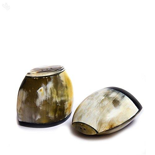 ARM S Buffalo Horn & Wood Salt & Pepper Shaker - Oval