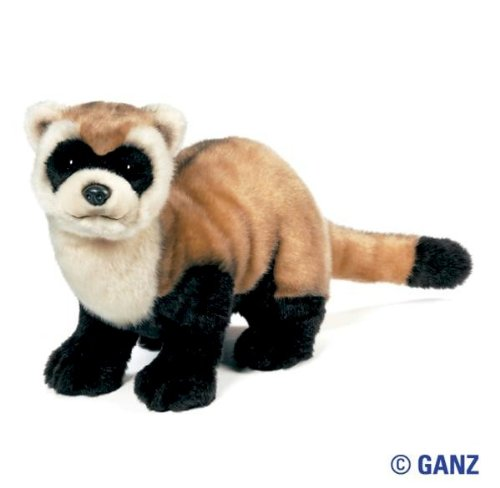 Webkinz Signature Black Footed Ferret with Trading Cards