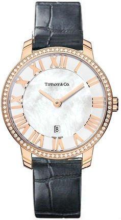 Tiffany & Co Z1831.11.30B91A88A
