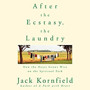 After the Ecstasy, the Laundry Hörbuch