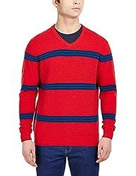 Flying Machine Men's V-Neck Wool Blend Sweater (FMSW0209_Poinsettia_L)