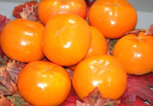 訳あり お買い得品富有柿 ご家庭用わけあり品(規格外品質) 約7.5kg M?L 30個前後入