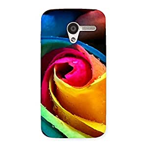 Enticing Rose Droplets Multicolor Back Case Cover for Moto X