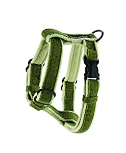 Planet Dog Cozy Hemp Adjustable Harness, Green