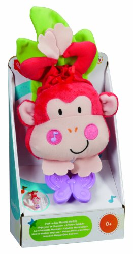 Fisher-Price Discover n' Grow Musical Crib Pull Down, Monkey (Discontinued by Manufacturer) - 1