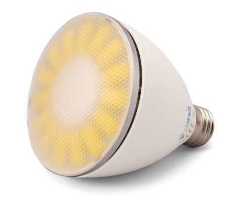 Benchmark By Viribright Led Light Bulb 800 Lumen Dimmable 10W Par30 Indoor Warm (Soft White) 2800K (65W Direct Replacement)