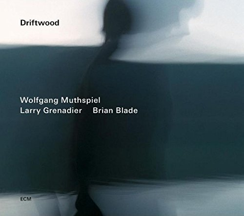 Driftwood by Wolfgang Muthspiel (2014-06-24) (Wolfgang Muthspiel Driftwood compare prices)