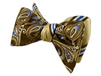 100% Silk Woven Chocolate and Champagne Eccentric Pulsar Reversible Self-Tie ...