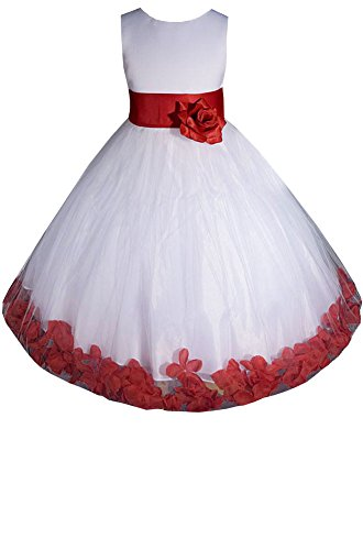 Amj Dresses Inc Baby-Girls White/Red Flower Girl Christmas Dress Size L