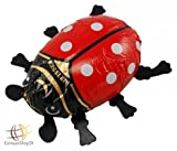 Riegelein Large Chocolate Ladybug Gift 50g