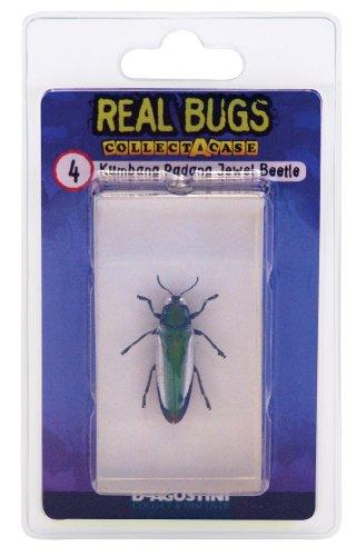 DeAgostini Real Bugs Kumbang Padang Jewel Beetle Bug - 1