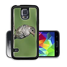 buy Liili Premium Samsung Galaxy S5 Aluminum Case Baby Eastern Bluebird Sialia Sialis On A Fence With Green Image Id 22725750