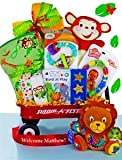 Baby Einstein Wild Wilderness Gift Basket - Great Gift