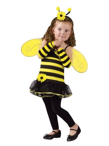 Fun World Costumes Baby-girls Honey Bee with Antennae & Wings
