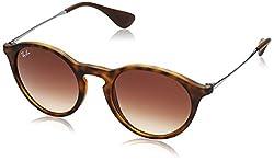 Ray-Ban Gradient Rectangular Unisex Sunglasses - (0RB4243865/1349|49|Brown Gradient Dark Brown)