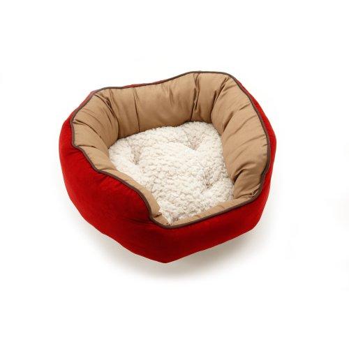 Toddler Boy Bedroom front-1037463