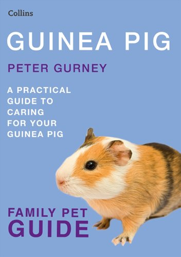 Best Guinea Pig Bedding 8880 front