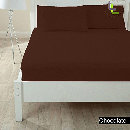 Floris Fashion Short Queen 500Tc 100% Egyptian Cotton Chocolate Solid Superb Finish 3Pcs Fitted Sheet Solid(Pocket Size: 25 Inches) front-691662
