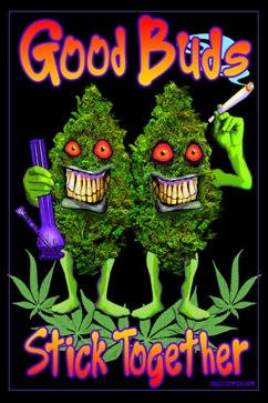 (24x36) Good Buds Stick Together Pot Marijuana Blacklight Poster Print