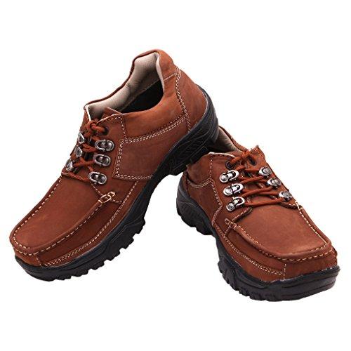 FBT Men's 7016 Brown Casual Shoes