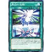 遊戯王カード 黒白の波動 遊戯王ゼアル ジャッジメント・オブ・ザ・ライト(JOTL)収録カード
