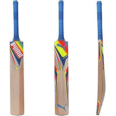 Puma Evospeed GT Pre Kashmir Willow Cricket Bat (89367001)