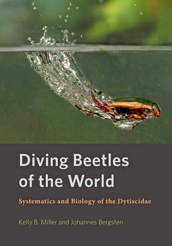 diving-beetles-of-the-world-systematics-and-biology-of-the-dytiscidae
