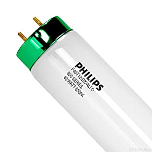 Philips 27359-9 - F40T12/DX/ALTO - 40 Watt Fluorescent Tube - T12 - 6500K - 800 Series Phosphors - Case of 30