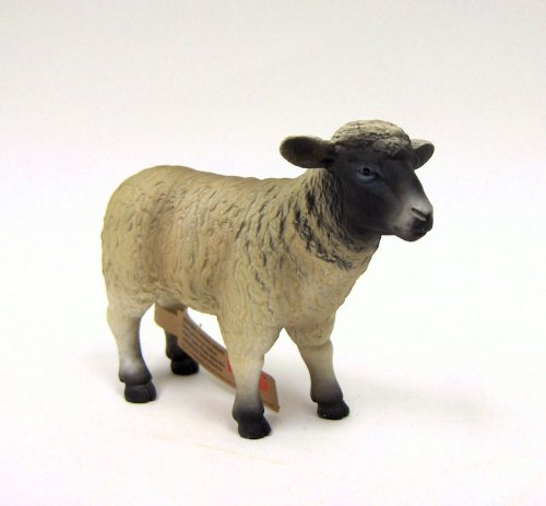 Black Faced Sheep (Ewe) by Mojo