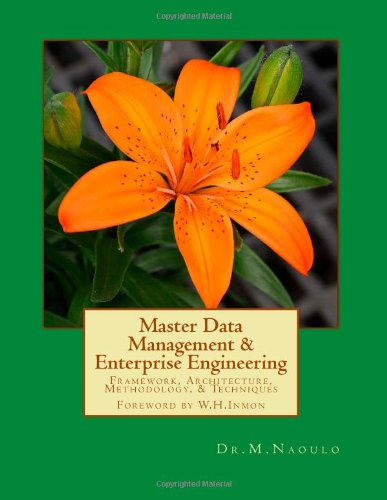 Master Data Management & Enterprise Engineering