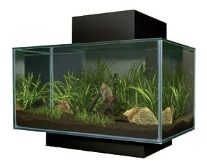 Fluval Edge Aquarium Set, Matte Black, 6-Gallon