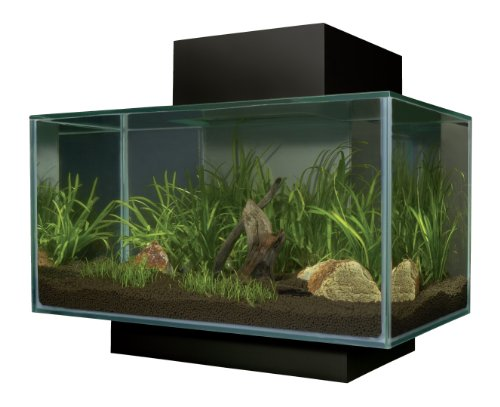 Fluval Edge Aquarium Set, Matte Black, 6-Gallon