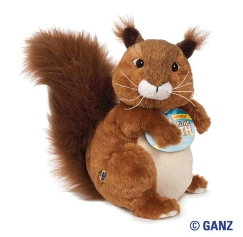 Webkinz Red Squirrel November Pet of the Month
