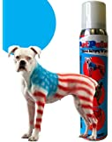PetPaint Colored Hair Spray (Beagle Blue)